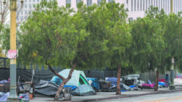 A row of tents on a city sidewalk as well as shopping carts and garbage.. A high rise office building in the background.
