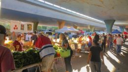 Shoppers at the Sunday Sacramento Farmers' Market