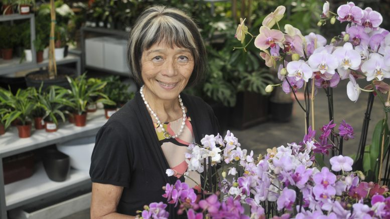 Kifumi Keppler, owner of Exotic Plants, with many blooming orchids.